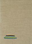 Berliner Malschicht V, 25 x 35 cm, eggtempera on canvas, 2009